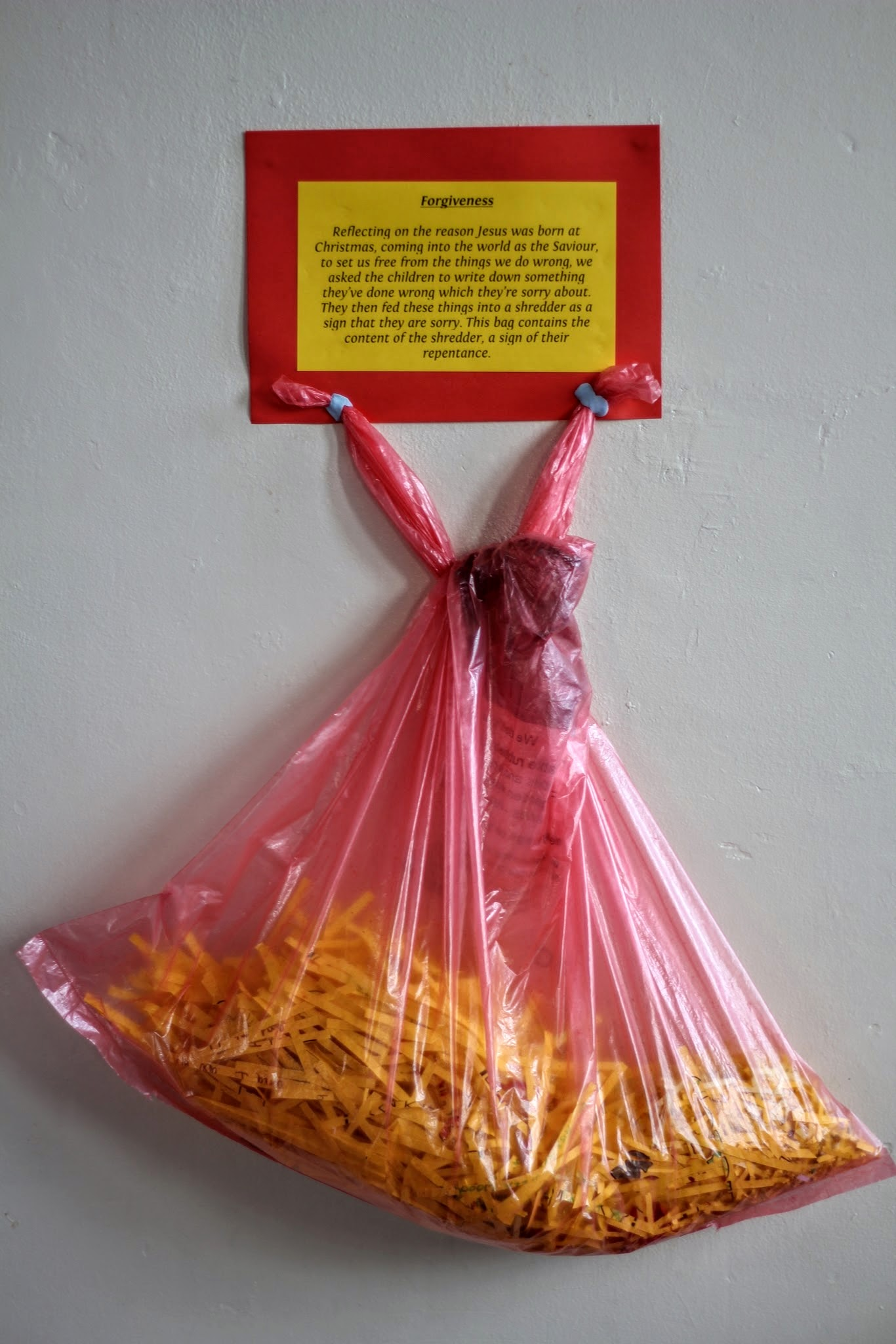 Our shredded Sorry sheets - a sign of forgiveness